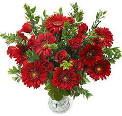 5 adet kirmizi gül 5 adet gerbera aranjmani  Zonguldak hediye çiçek yolla