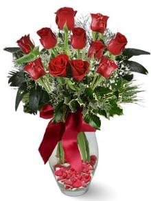 9 adet gül  Zonguldak internetten çiçek satışı  kirmizi gül