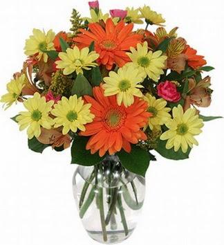 Zonguldak hediye sevgilime hediye çiçek  vazo içerisinde karışık mevsim çiçekleri
