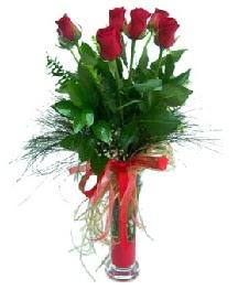 vazo içerisinde 5 kırmızı gül  Zonguldak güvenli kaliteli hızlı çiçek