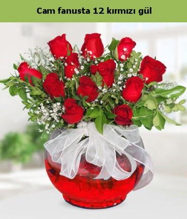 Cam içerisinde 12 adet kırmızı gül  Zonguldak internetten çiçek satışı