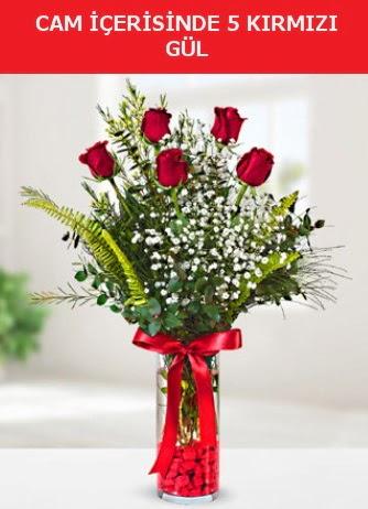 Cam içerisinde 5 adet kırmızı gül  Zonguldak çiçek siparişi sitesi