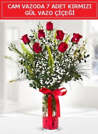 Cam vazoda 7 adet kırmızı gül çiçeği  Zonguldak çiçek gönderme sitemiz güvenlidir
