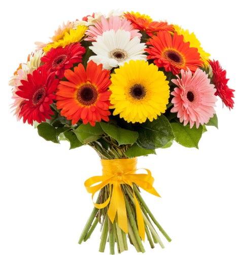 Gerbera demeti buketi  Zonguldak çiçek satışı