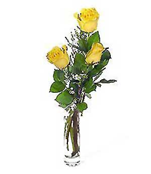 Zonguldak internetten çiçek siparişi  3 adet kalite cam yada mika vazo gül