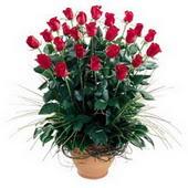 Zonguldak uluslararası çiçek gönderme  10 adet kirmizi gül cam yada mika vazo
