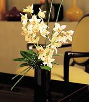 Zonguldak çiçekçiler  cam yada mika vazo içerisinde dal orkide