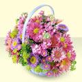 Zonguldak çiçek yolla , çiçek gönder , çiçekçi   bir sepet dolusu kir çiçegi  Zonguldak çiçek gönderme sitemiz güvenlidir