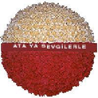 arma anitkabire - mozele için  Zonguldak çiçek gönderme sitemiz güvenlidir