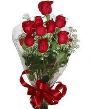 9 adet kaliteli kirmizi gül   Zonguldak online çiçekçi , çiçek siparişi