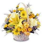 sadece sari çiçek sepeti   Zonguldak çiçek gönderme sitemiz güvenlidir