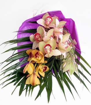Zonguldak anneler günü çiçek yolla  1 adet dal orkide buket halinde sunulmakta