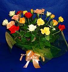 Zonguldak hediye çiçek yolla  13 adet karisik renkli güller