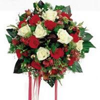 Zonguldak çiçekçi telefonları  6 adet kirmizi 6 adet beyaz ve kir çiçekleri buket