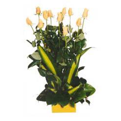 12 adet beyaz gül aranjmani  Zonguldak kaliteli taze ve ucuz çiçekler