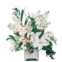 Zonguldak internetten çiçek siparişi  sadece beyazlardan olusmus mevsim cam yada mika tanzim