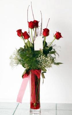 Zonguldak anneler günü çiçek yolla  6 adet kirmizi gül ve cam yada mika vazo