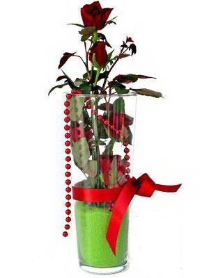 Zonguldak online çiçek gönderme sipariş  Cam yada mika içerisinde 9 adet kirmizi gül - sevdiklerinize özel