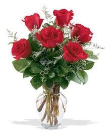 Zonguldak çiçek gönderme sitemiz güvenlidir  7 adet kirmizi gül cam yada mika vazoda sevenlere