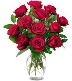 Zonguldak online çiçek gönderme sipariş  1 düzine kirmizi gül sevenlere özel vazo gülleri
