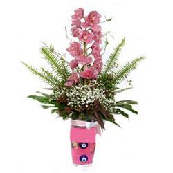 Zonguldak hediye çiçek yolla  cam yada mika vazo içerisinde tek dal orkide çiçegi