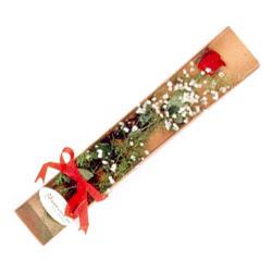 Zonguldak çiçek , çiçekçi , çiçekçilik  Kutuda tek 1 adet kirmizi gül çiçegi