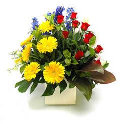 Zonguldak online çiçek gönderme sipariş  9 adet gül ve kir çiçekleri cam yada mika vazoda