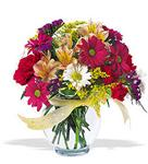 Zonguldak çiçek , çiçekçi , çiçekçilik  cam yada mika vazo içerisinde karisik kir çiçekleri