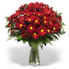 Zonguldak çiçek yolla  Kir çiçekleri cam yada mika vazo içinde