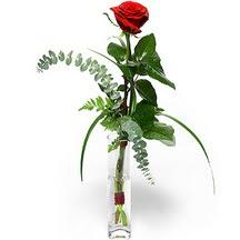 Zonguldak 14 şubat sevgililer günü çiçek  Sana deger veriyorum bir adet gül cam yada mika vazoda