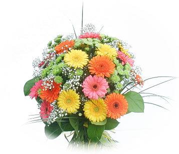 13 adet gerbera çiçegi buketi  Zonguldak online çiçek gönderme sipariş