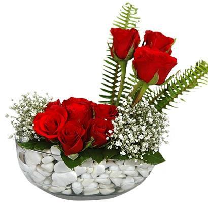 cam içerisinde 9 adet kirmizi gül  Zonguldak çiçek siparişi vermek