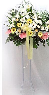 Zonguldak online çiçek gönderme sipariş   perförje çiçegi dügün çiçekleri