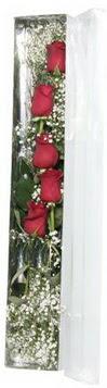 Zonguldak çiçek siparişi sitesi   5 adet gülden kutu güller