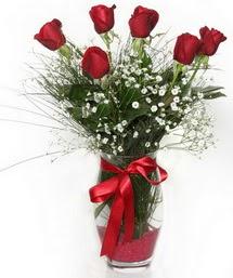 7 adet gülden cam içerisinde güller  Zonguldak 14 şubat sevgililer günü çiçek