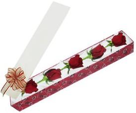 Zonguldak internetten çiçek satışı  kutu içerisinde 5 adet kirmizi gül