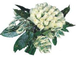 Zonguldak internetten çiçek siparişi  9 Beyaz gül Özel kisiler için