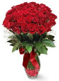 19 adet essiz kalitede kirmizi gül  Zonguldak 14 şubat sevgililer günü çiçek