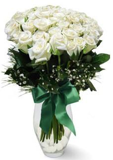 19 adet essiz kalitede beyaz gül  Zonguldak çiçekçiler