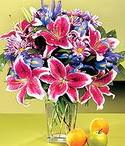 Zonguldak çiçek mağazası , çiçekçi adresleri  Sevgi bahçesi Özel  bir tercih