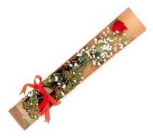 1 adet kirmizi gül  Zonguldak ucuz çiçek gönder