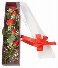 kutu içinde 5 adet kirmizi gül  Zonguldak internetten çiçek siparişi