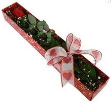 Tek kirmizi gül kutu içerisinde  Zonguldak güvenli kaliteli hızlı çiçek