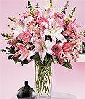 Zonguldak yurtiçi ve yurtdışı çiçek siparişi  Kazablanka biçme vazoda