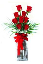 Zonguldak ucuz çiçek gönder  9 adet mika yada cam vazoda gül tanzimi