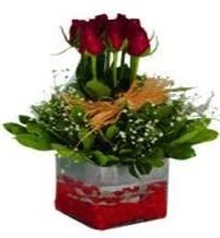 Zonguldak çiçek gönderme  7 adet mika yada cam vazoda gül tanzimi
