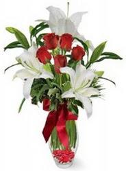Zonguldak çiçek siparişi vermek  5 adet kirmizi gül ve 3 kandil kazablanka