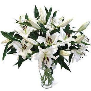 Zonguldak ucuz çiçek gönder  3 dal görsel casablanca vazo tanzimi