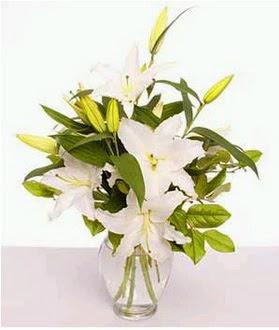 Zonguldak çiçek gönderme  2 dal cazablanca vazo çiçeği