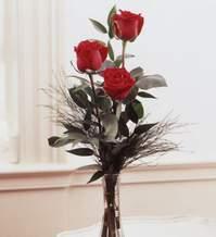 Zonguldak internetten çiçek satışı  Vazoda 3 adet güzel gül